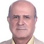 محمد-زالی
